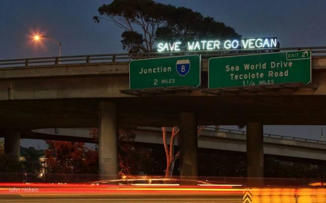 save-water-go-vegan